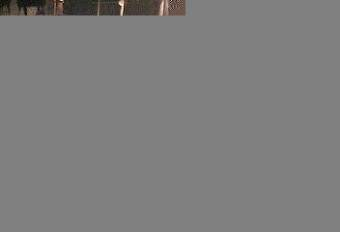 Webcam Graz