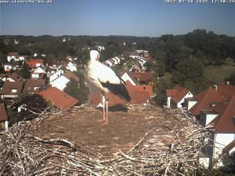Webcam Bad Waldsee