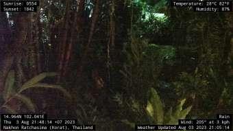 Webcam Nakhon Ratchasima (Korat)