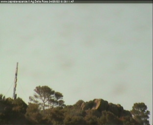 webcam isola di capraia