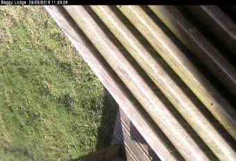 Webcam Croyde