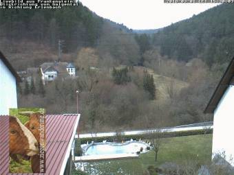 Webcam Frankenstein (Palatinate)