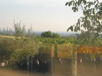 Webcam Albano Laziale