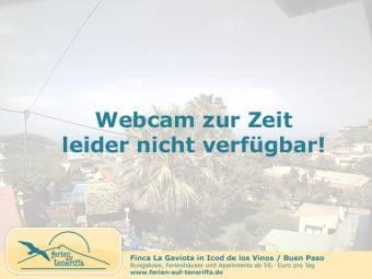 Webcam Icod de los Vinos (Tenerife)