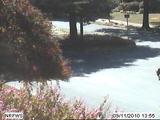 Webcam Norfolk, Virginia