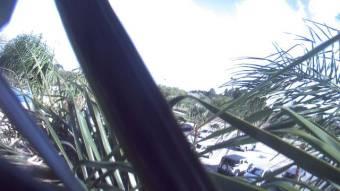 Webcam Brownsville, Texas