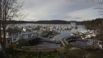 Webcam Roche Harbor, Washington