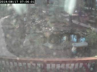 Webcam Pinetop, Arizona