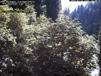Webcam Riezlern (Kleinwalsertal)