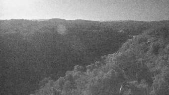 Webcam Kuranda