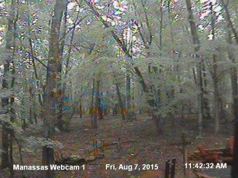 Webcam Lee Manor, Virginia