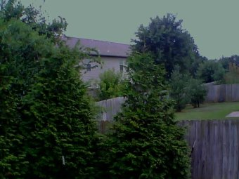 Webcam Springdale, Arkansas