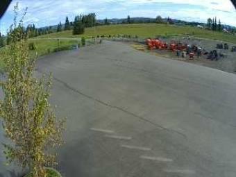 Webcam Toledo, Washington