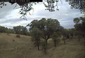Webcam Sonoita, Arizona