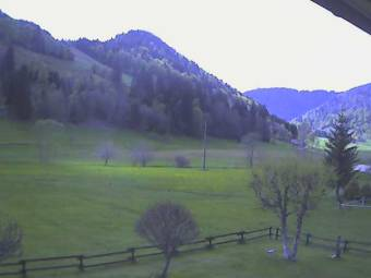 Webcam Menzenschwand-Hinterdorf