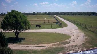 Webcam Aubrey, Texas