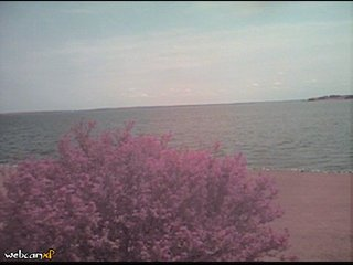 Webcam Brandon, Mississippi