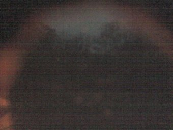 Webcam Califon, New Jersey