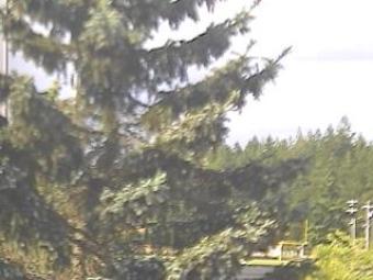 Webcam Shelton, Washington