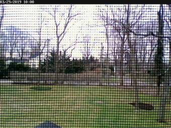 Webcam East Setauket, New York