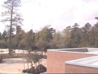 Webcam The Woodlands, Texas