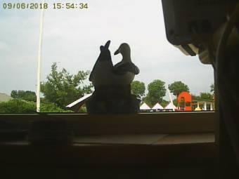 Webcam Skovmose