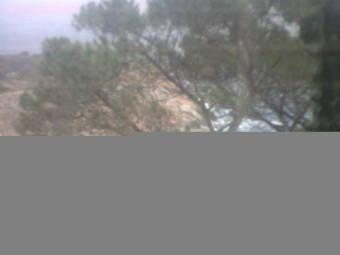 Webcam Cala degli Alberi (Isola del Giglio)