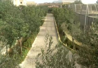 Webcam Gzira