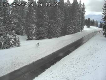 Webcam Grand Mesa National Forest, Colorado