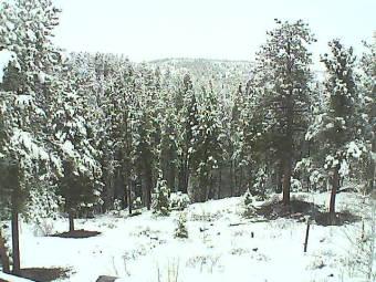 Webcam Nederland, Colorado
