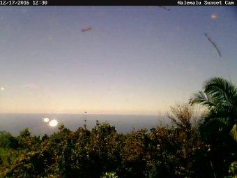 Webcam Captain Cook, Hawaii