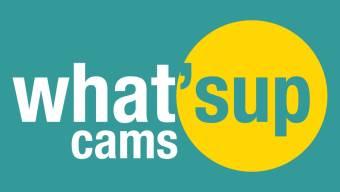 Webcam Skradin