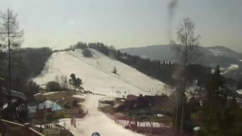 Webcam Szczawnica
