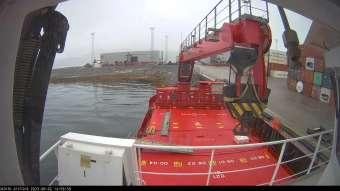 Webcam Minik Arctica
