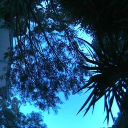 Webcam Greensborough