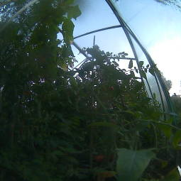 Webcam Kortenberg