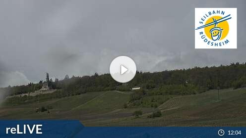 Rüdesheim Webcam