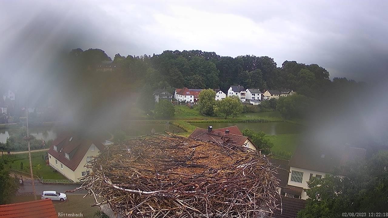 Storchencam Röttenbach