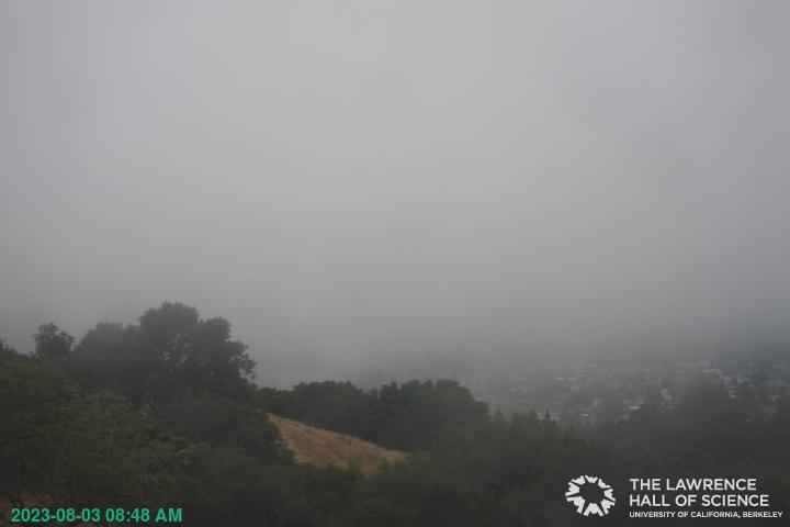 Berkeley, California Mon. 08:49