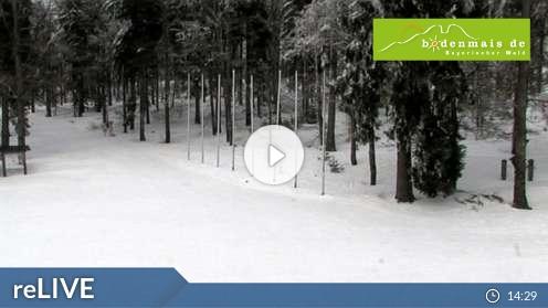 Webcam Bodenmais