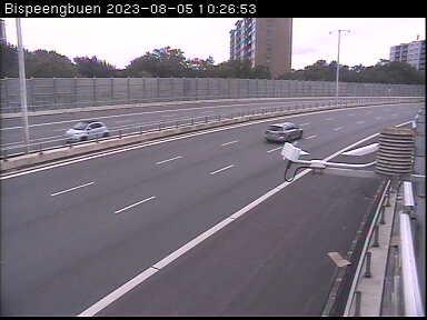 copenhagen escort dk live  webcam