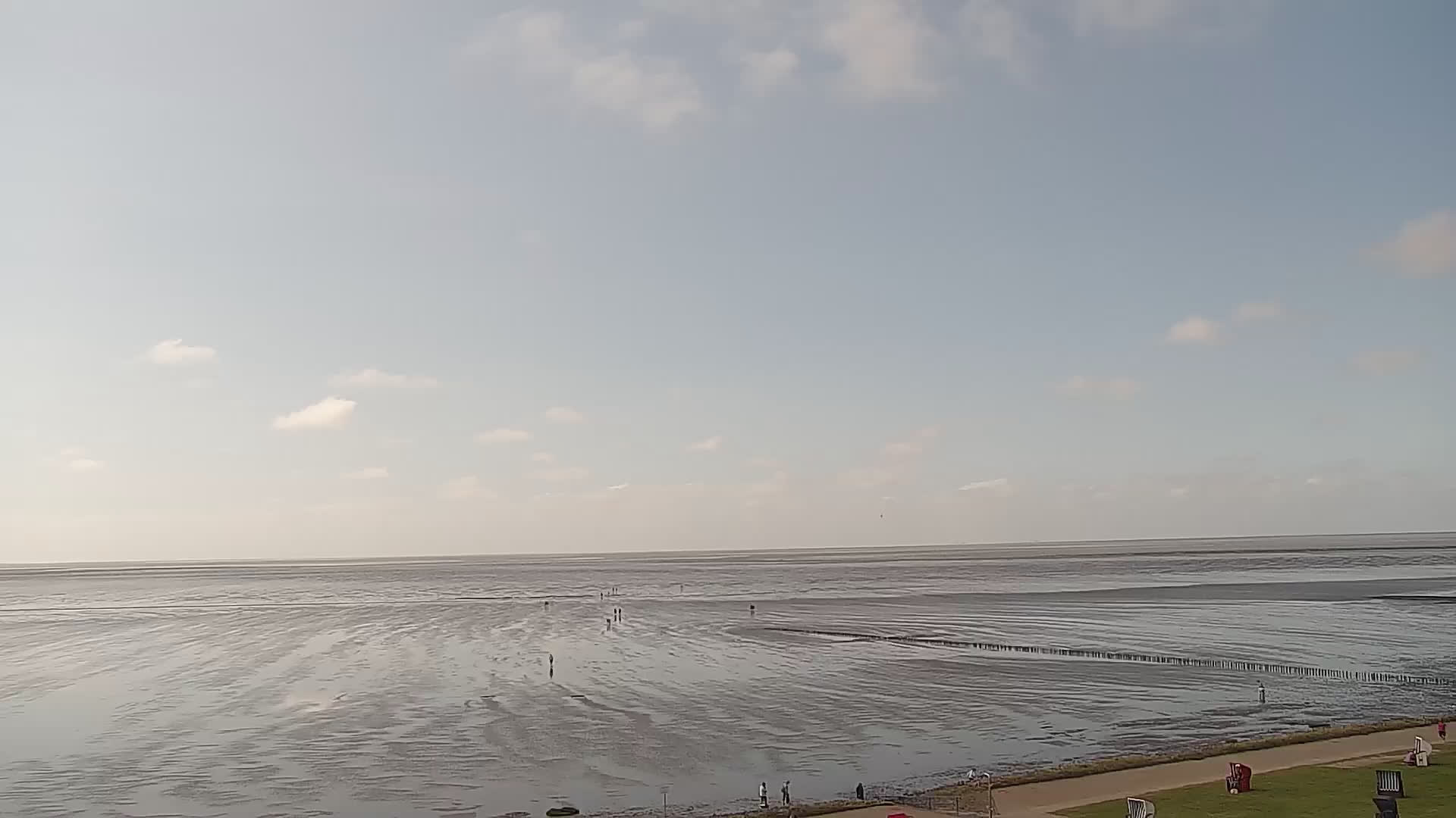 Webcam Friedrichskoog