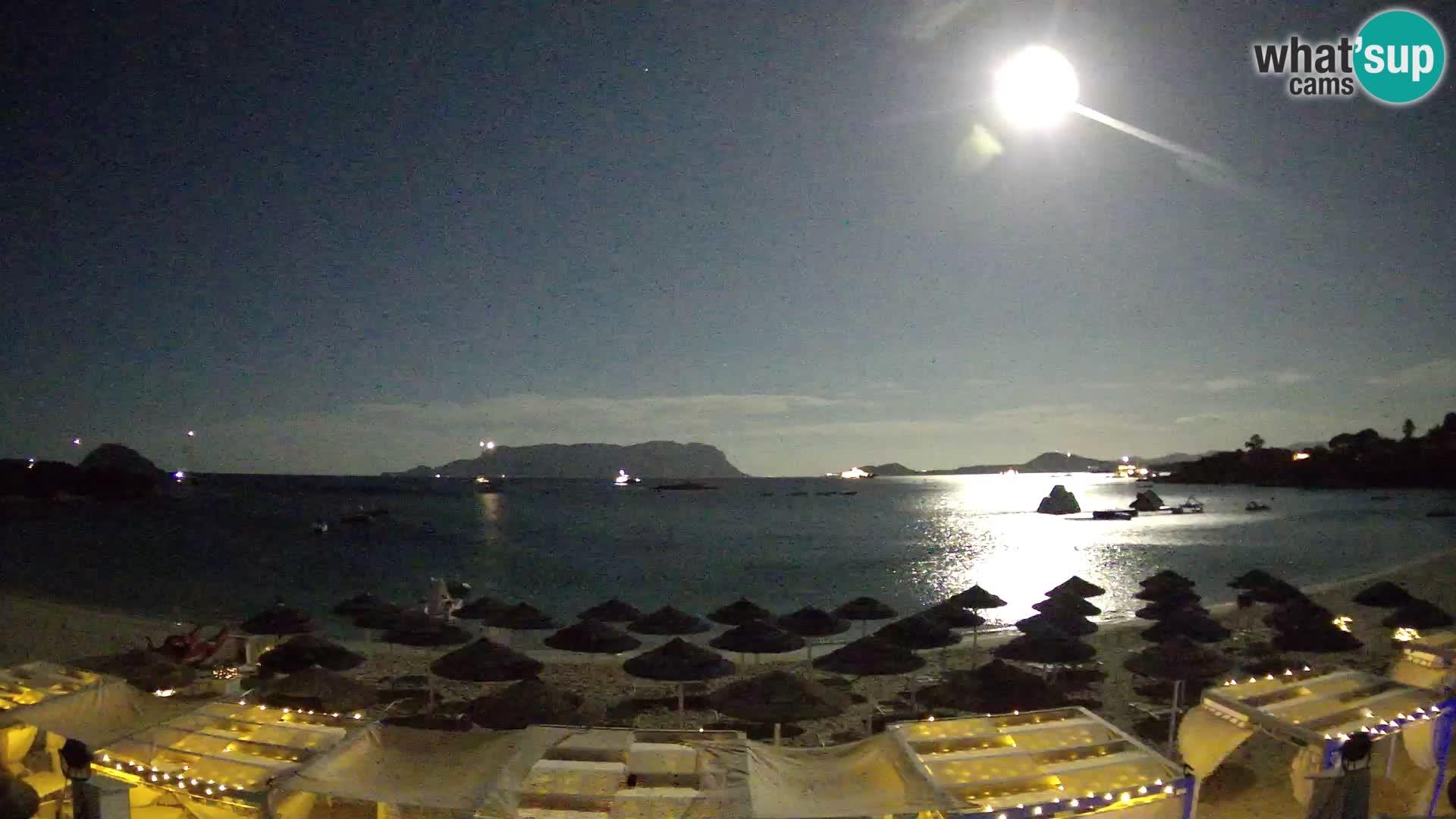 Golfo Aranci (Sardinia) Wed. 00:35