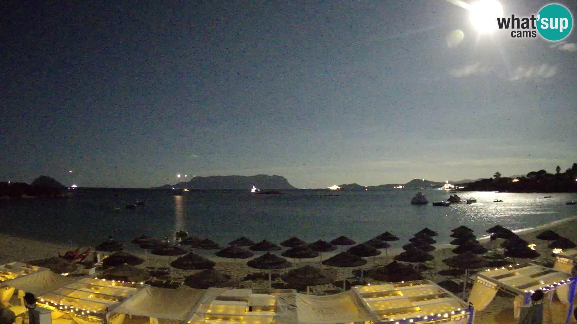 Golfo Aranci (Sardinia) Wed. 01:35