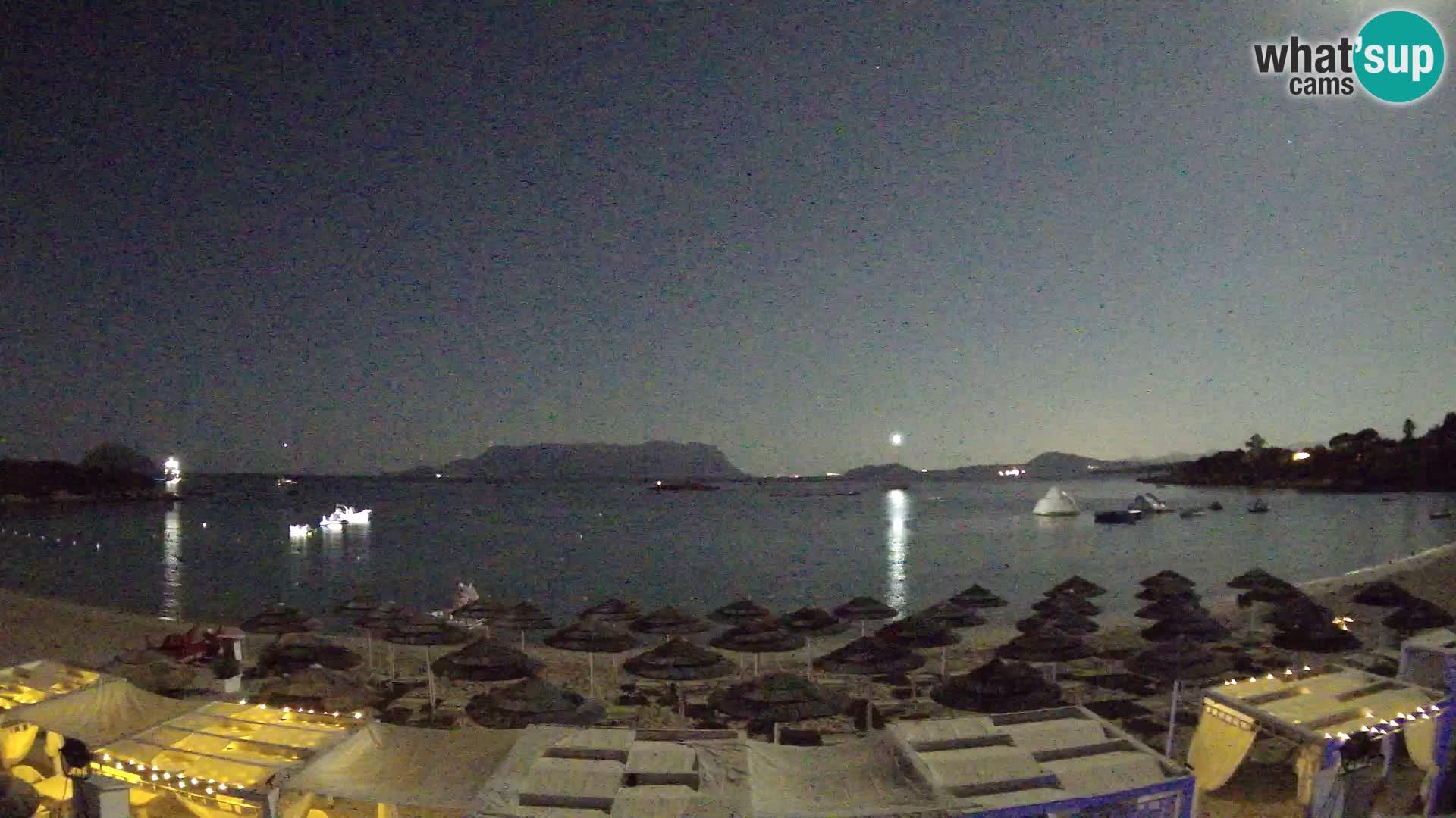 Golfo Aranci (Sardinia) Wed. 03:35