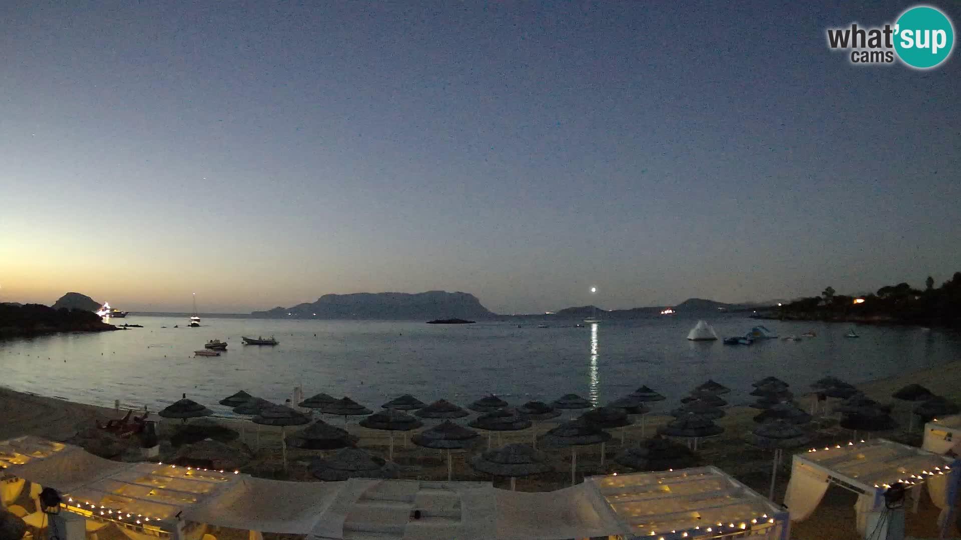 Golfo Aranci (Sardinia) Wed. 05:35