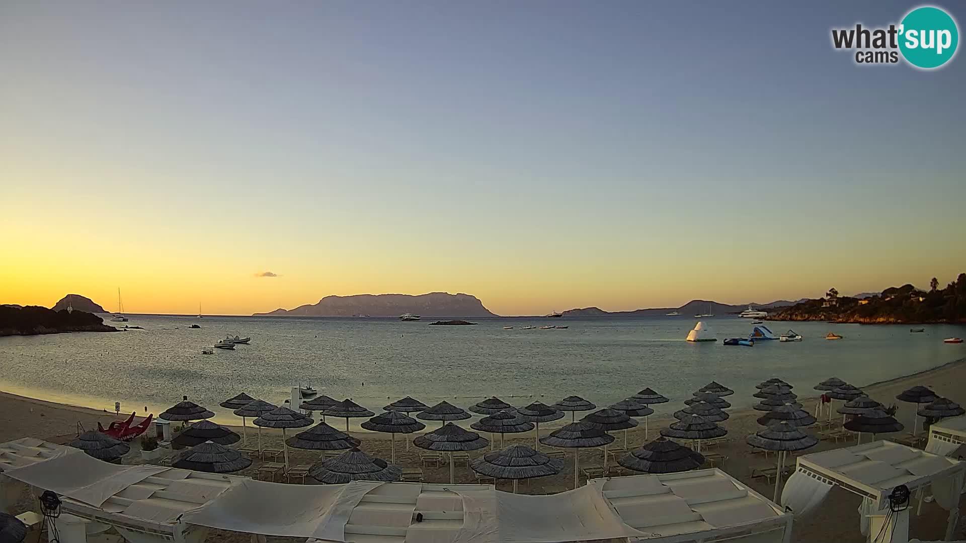 Golfo Aranci (Sardinia) Wed. 06:35