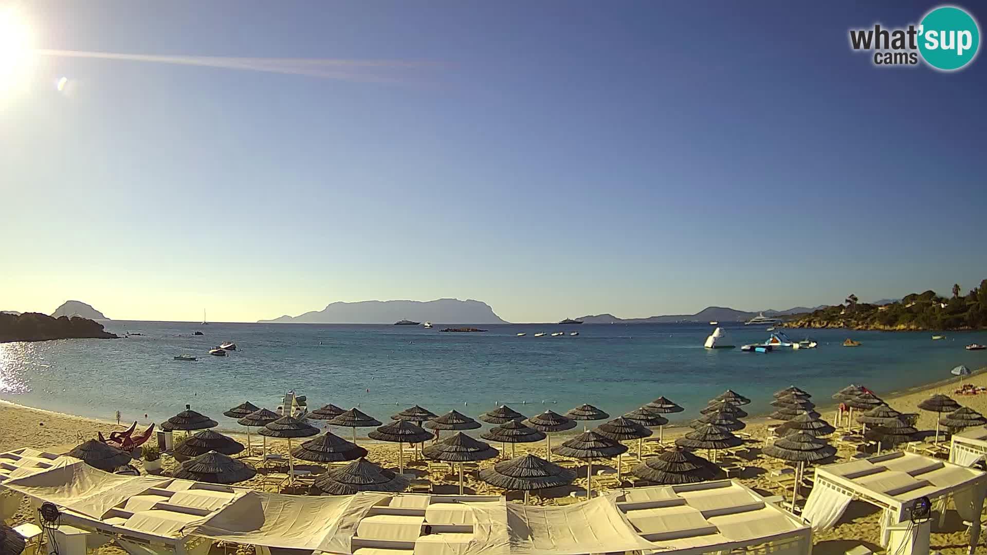 Golfo Aranci (Sardinia) Wed. 08:35