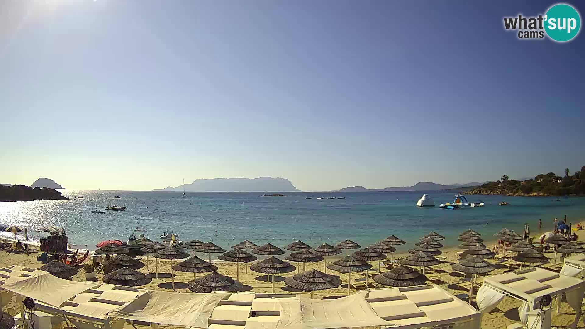 Golfo Aranci (Sardinia) Wed. 09:35