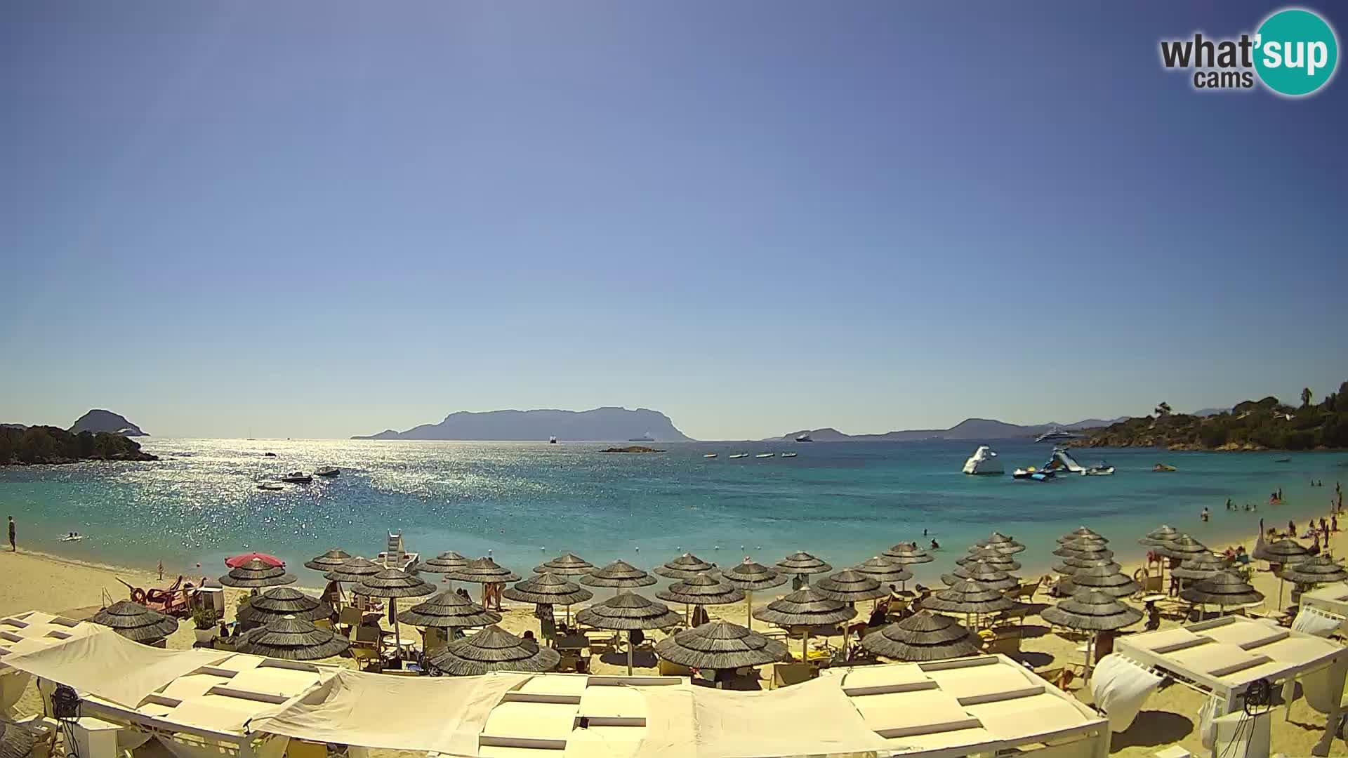 Golfo Aranci (Sardinia) Wed. 11:35